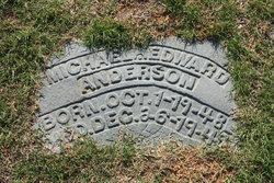 Michael Edward Anderson