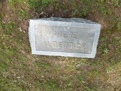 Phoebe B. <i>Canter</i> Alderice