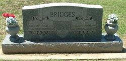 Sarah Elizabeth Sadie <i>Horn</i> Bridges