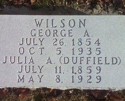George Albert Wilson