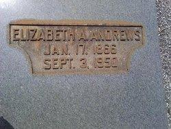 Elizabeth Alice <i>Argo</i> Andrews