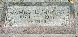 James Elmer Griggs