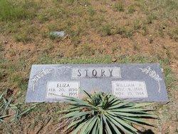 William Riley Story