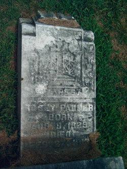 Rosannah J Rosy Palmer