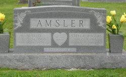 Stella <i>Rogers</i> Amsler