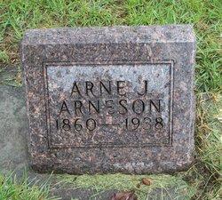 Arne J Arneson