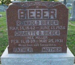 Reinhold Bieber