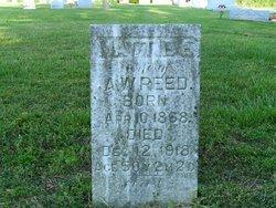 Mattie E. Reed