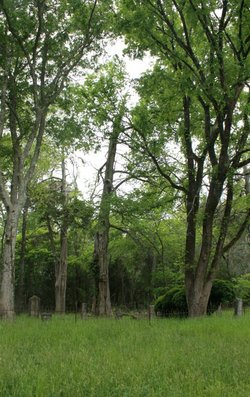 Montpelier Plantation Cemetery