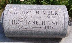 Lucy Jane Meek