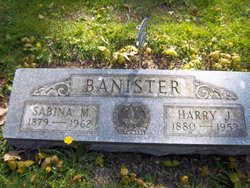 Harry J W Bannister