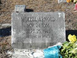 Lucinda Mozell <i>Baker</i> Arnold