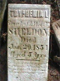 Tryphenia L. Sheldon