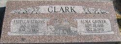 Fanny Estella <i>Strong</i> Clark