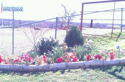 Opal Cemetery