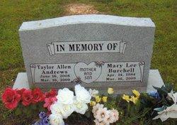 Tayler Allen Andrews