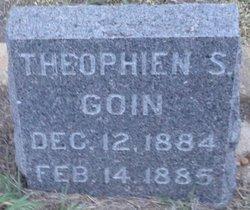 Theophien S. Goin