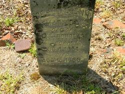 Celestra Ann Matilda Douglass