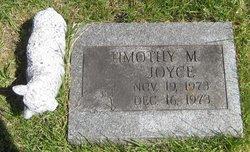 Timothy M Joyce