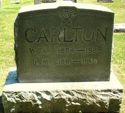 B M Carlton