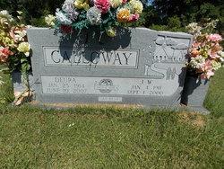 J. W. Calloway