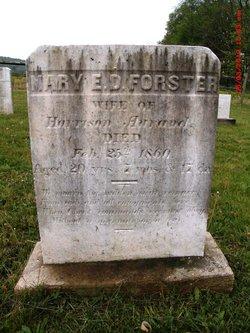 Mary E D <i>Forster</i> Aurand