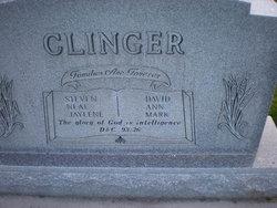 Arlene <i>Hanson</i> Clinger