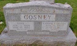 Dave Gosney