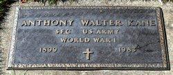 Anthony Walter Kane