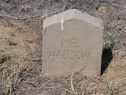 Robert Walker Haddow