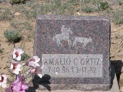 Amalio C Ortiz
