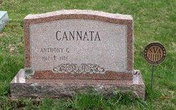 Anthony G Cannata