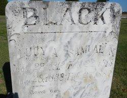 Lucy Ann <i>Hodges</i> Black