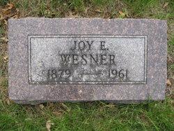 Joy Eugene Wesner