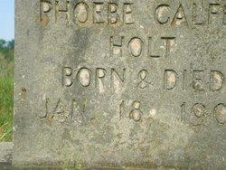 Phoebe Calfee Holt