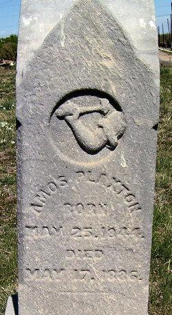 Amos Plaxton