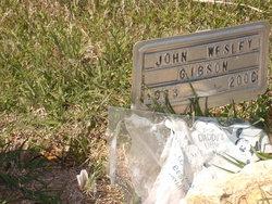 John Wesley Gibson