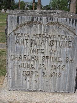 Antonia Stone