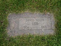 David Allen Leib