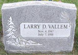 Larry D Vallem