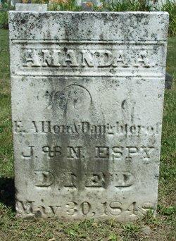 Amanda Ann <i>Espy</i> Allen