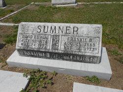David Edwin Sumner