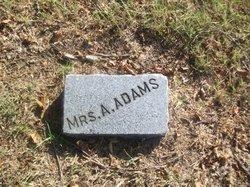 Mrs A. Adams