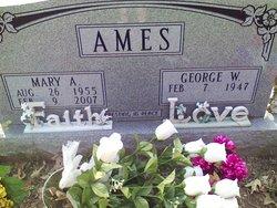 Mary Ann <i>Hice</i> Ames