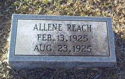 Allene Reach