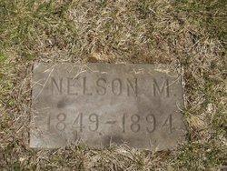 Nelson Champion