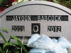 Jaydon L Babcock