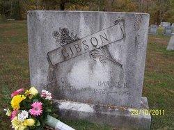 Ida Caroline <i>Nicholson</i> Gibson