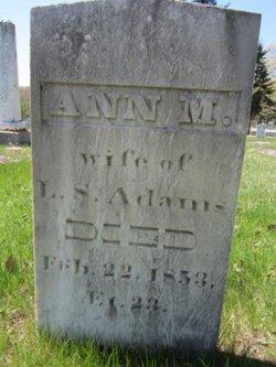 Ann Marie <i>Hall</i> Adams