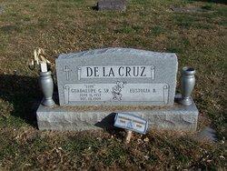 Guadalupe G (Lupe) DeLaCruz, Sr